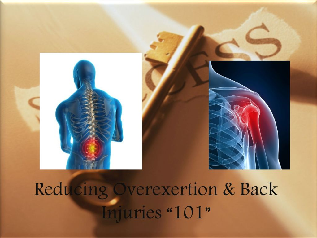 thumbnail of Reducing Overexertion & Back Injuries