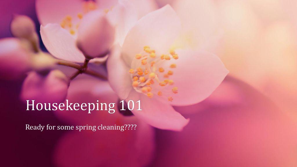thumbnail of Housekeeping 101